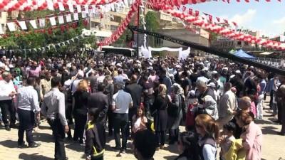 'Mardin Güvercin Festivali' - MARDİN