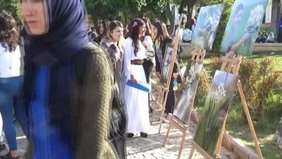 Cizre'de Nergis Festivali yapıldı