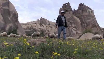 Kapadokya vadilerinin çobanı: 'Afgan Ali' - NEVŞEHİR