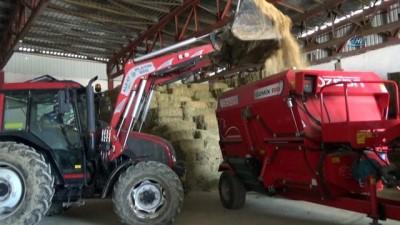 Devlet desteğiyle kurduğu tesiste günde 3 ton süt elde ediyor