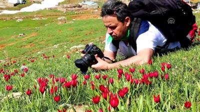 Doğa harikası Eğrigöl'e fotoğrafçı ilgisi - KONYA