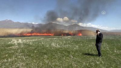 hayvan - Sazlık alanda yangın - VAN