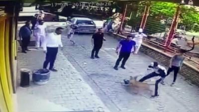 Pitbullun kediye saldırısı güvenlik kamerasında - AYDIN