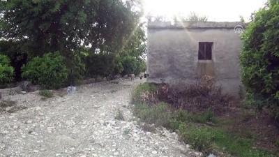 Kozan'da cinayet - ADANA