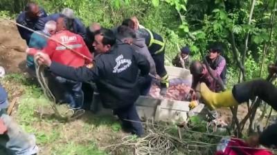 Yamaçtan yuvarlanan ineği itfaiye kurtardı - ORDU