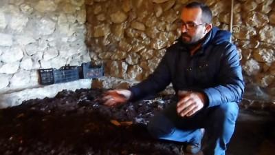 Bozkır'da solucan gübresi üretimi - KONYA