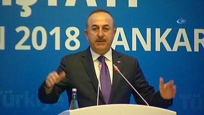 """Dışişleri Bakanı Mevlüt Çavuşoğlu: '2050 yılında dünya ekonomisine daha fazla katkı sağlayacak kıt'alara şimdiden stratejik şekilde gitmemizde yarar var"""""""