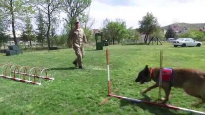 Terörle mücadelenin mayın ve EYP avcılarına hassas eğitim - NEVŞEHİR