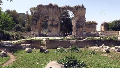 Anavarza için hedef 'UNESCO kalıcı miras listesi' - ADANA