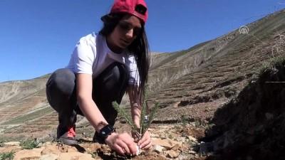 Afrin şehitlerinin adı Dideban Dağı'nda yaşatılacak - BİTLİS