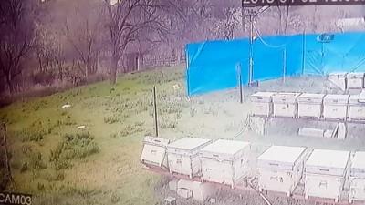 Gümüşhane'de fırtına kovanları böyle dağıttı