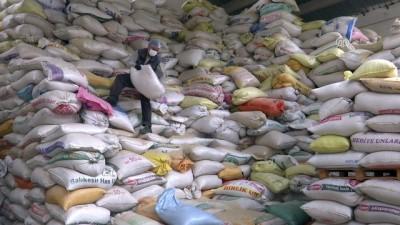 Hindistan'a rekor haşhaş ihracatı - İZMİR