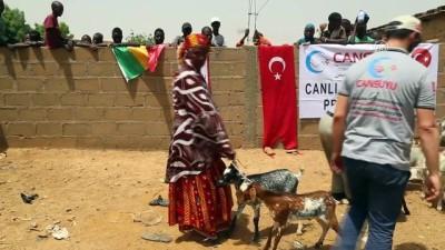Cansuyu'ndan Afrikalılara 'canlı hayvan' desteği - MALİ