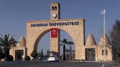 Türkçe öğrenip üniversite hayallerine kavuştular - ŞANLIURFA