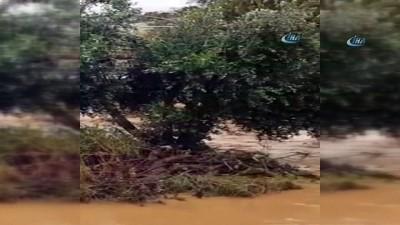 - Suriye'de sel felaketi
