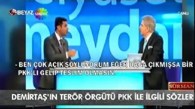 ferda yildirim - HDP'lilerden terör örgütü güzellemeleri