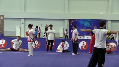 17. Avrupa Wushu Şampiyonası - MOSKOVA