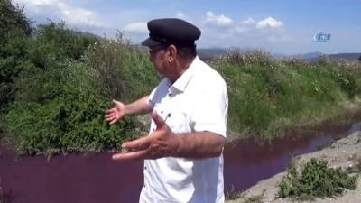 Muğla'da çevreci ve vatandaşlardan atık su tepkisi