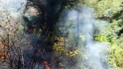 Marmaris'te çıkan orman yangını afacan işi çıktı