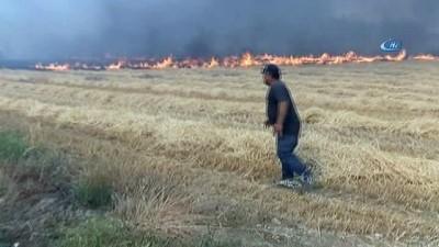 Denizli'de orman yangını kontrol altına alındı
