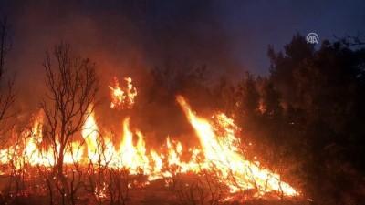 Seydikemer'deki orman yangını kontrol altına alındı - MUĞLA