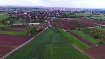 Yağışlar Trakya çiftçisini neşelendirdi - KIRKLARELİ
