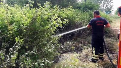 Hurdalıkta başlayan yangın ağaçlık alana sıçradı