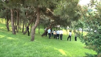 Şişli'de ağaca asılı ceset bulundu İzle