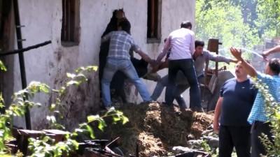 yangin yeri - Yanan ahırdaki hayvanları kurtarmak için seferber oldular - AMASYA