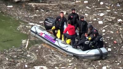 Otomobilin nehre düşmesi - ARTVİN