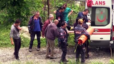 Fındık bahçesine devrilen otomobilin sürücüsü yaralandı - ZONGULDAK Haberi