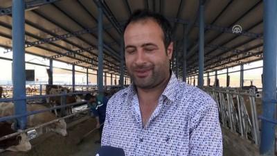Kurduğu çiftlikte 15 kişiyi iş sahibi yaptı - DİYARBAKIR