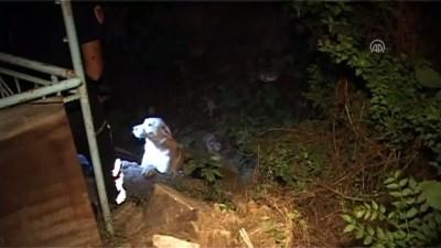 kanald - Su kanalında mahsur kalan köpeği itfaiye kurtardı - TOKAT