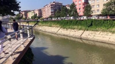 Amik Ovası'na hayat veren Asi Nehri temiz akacak - HATAY