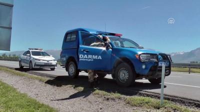 kanald - Yaralı sürücü hastaneye götürülmeyi reddedip aracının yanında bekledi - ERZİNCAN