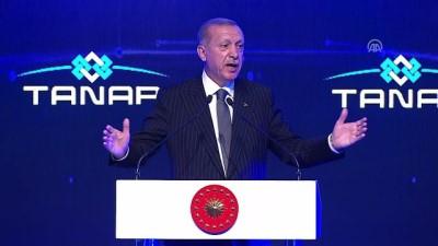 Cumhurbaşkanı Erdoğan: 'Türkiye olarak Avusturya hükümetinin yanlışta ısrar etmek yerine bir an önce aklıselime dönmesinde fayda görüyoruz' - ESKİŞEHİR