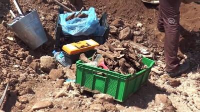 İnşaat kazısında insan kemikleri ve sikke bulundu - DENİZLİ