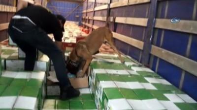 İstanbul'da yılın ilk 5 ayında 6 tona yakın uyuşturucu ele geçirildi