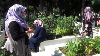 Şehit annesi oğlunun mezarını eliyle temizledi