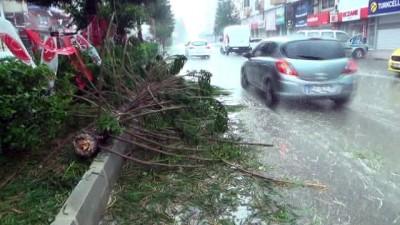 Dolu yağışı zarara neden oldu
