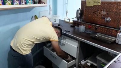 Kedi girdiği iş yerinin çekmecesinde yavruladı - SİİRT