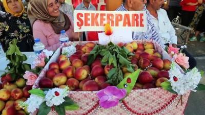 Arsuz'da 'Geleneksel Kayısı Festivali' yapıldı - HATAY