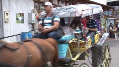 """Faytoncular Odası Başkanı Ünal, """"Adaya atların hepsi kontrollü, sağlık taramasından geçirilmiş olarak getirildi"""""""