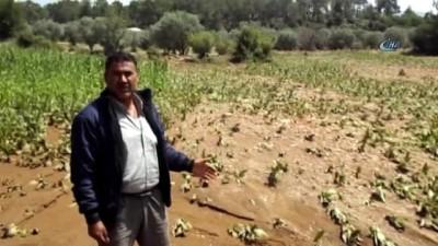 Karacasu'yu 5 günde ikinci kez sel ve dolu vurdu