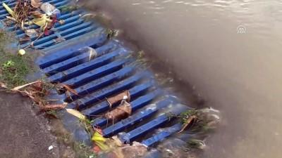 Sağanak sonrası bodrum katları su bastı, araçlar zarar gördü - ADANA