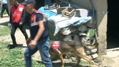 Leyla için Ankara'dan kadavra ve ceset arama köpeği getirildi