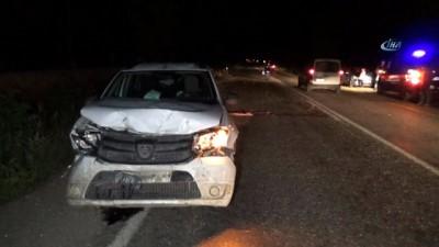 Otomobil koyun sürüsüne çarptı: 22 koyun telef oldu