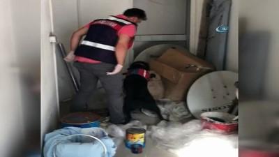 300 jandarmayla dev uyuşturucu operasyonu: 20 gözaltı