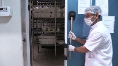 Elazığ'da 4 bin metrekare alana çökelek tesisi kurdu