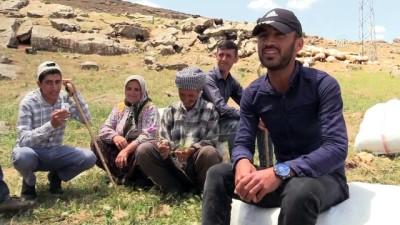 Pervari'nin dağlarında silah sesinin yerini türküler aldı - SİİRT